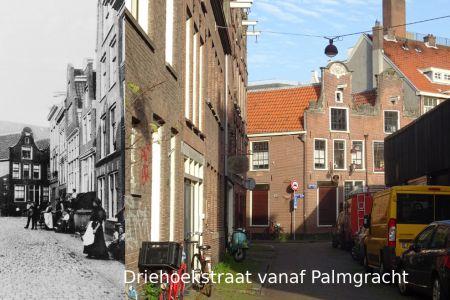 017_Driehoekstraat vanaf Palmgracht.jpg