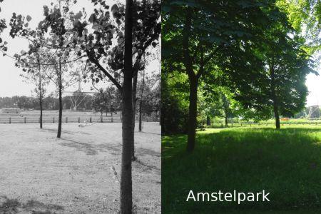 Amstelpark(1).jpg