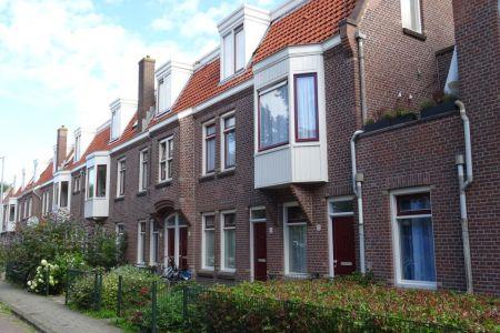 Nieuwendammerham_01.JPG