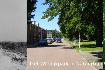 Piet Wiedijkpark.jpg