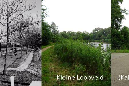 Kleine Loopveld.jpg