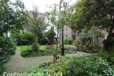 Concordiahofje Noord(k).jpg