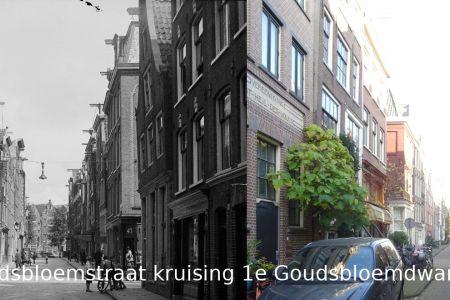 043 Goudsbloemstraat kruising 1e Goudsbloemdwarsstraat.jpg